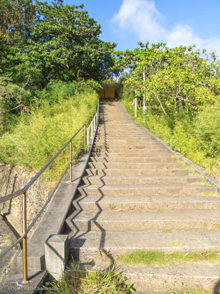 ・・・ま、まだ続くのかこの階段地獄は!!