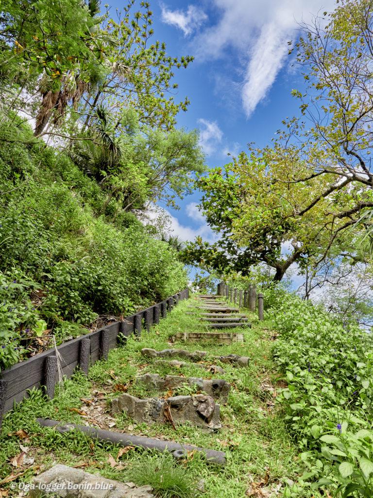 中山峠への道9