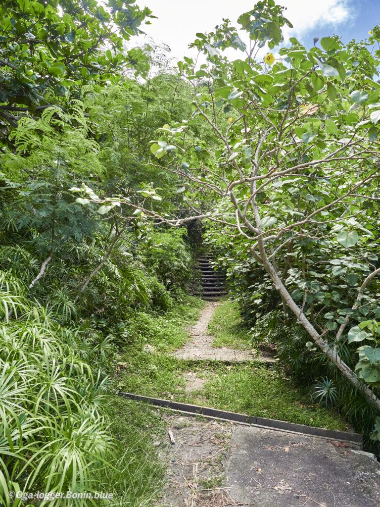 中山峠への道7