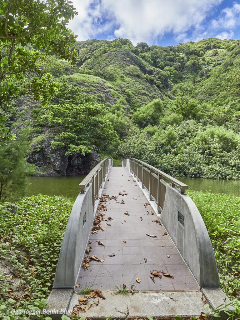 中山峠への道4