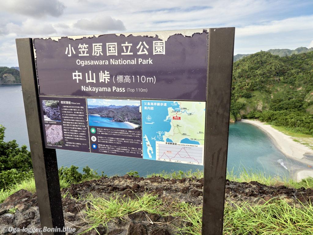 中山峠への道13